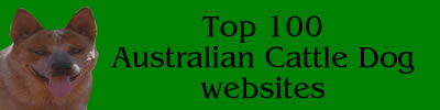 Australian Cattle Dog Websites